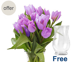 20 lilac tulips