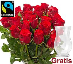 Rote Fairtrade Rosen