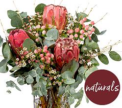 naturals: Winter Romance