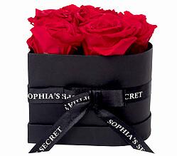 6 rote haltbare Rosen