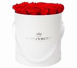 20 rote haltbare Rosen