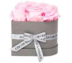 6 rosa haltbare Rosen