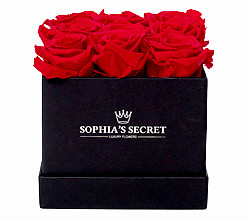 9 rote haltbare Rosen