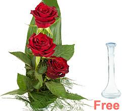 Rose Trio Serenade