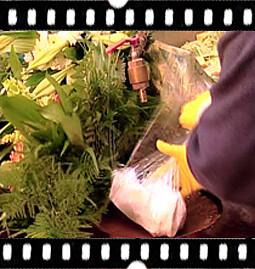 6. Der Blumenstrauß ist fertig zum Einpacken