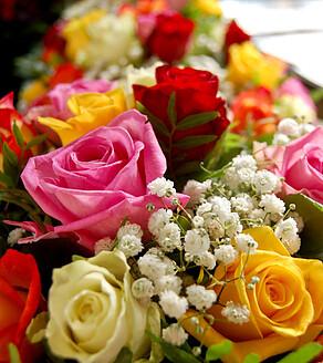 Top-frische Blumen