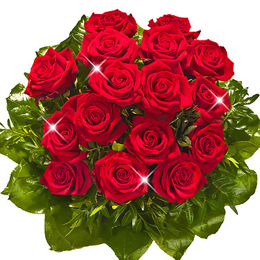 Langstielige rote Rosen