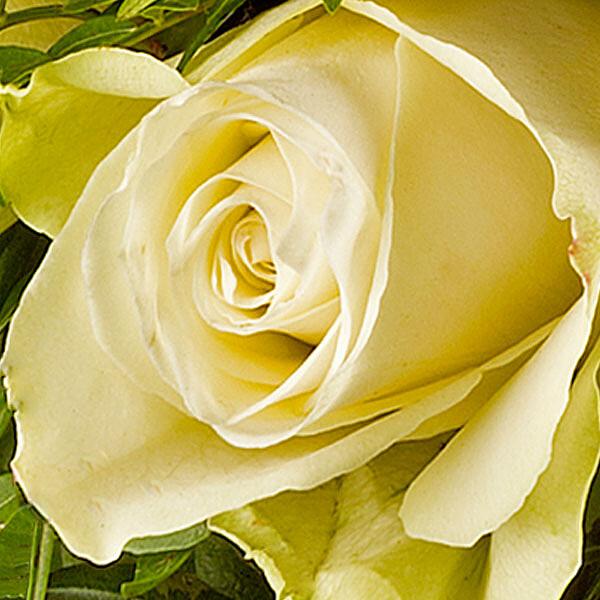 Rosenstrauß mit Vase Rosenpoesie