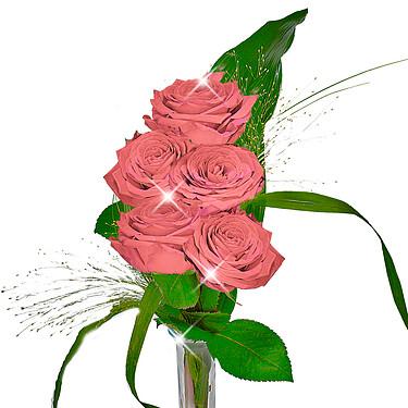 Rosa Rosen im Bund