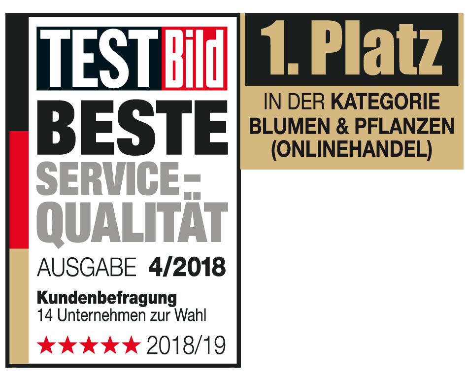 Test BILD Beste Service Qualität