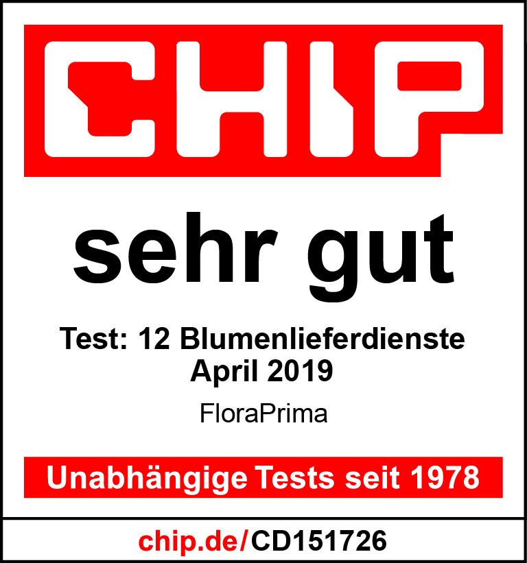 CHIP.de Unabhängige Tests